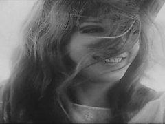 vintage softcore a vídeos hd