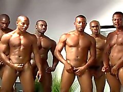 homossexual gays gays negros boquetes