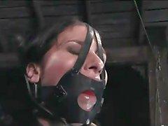 BDSM Files 078