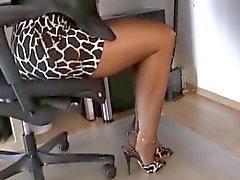 ff nylons secretary