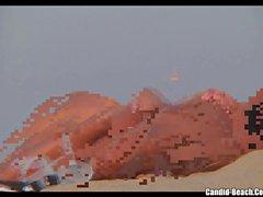 plage poilu cames cachées