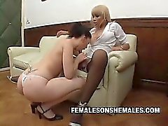 Office, Boss, Secretary Videos