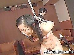 amador asiático bdsm