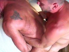 os ursos de homossexual blowjob gay gays lésbicas