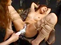 asiatisch chinesisch niedlich behaart
