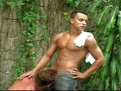 Hot in the jungle #2