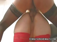 Horny Shemale Karen Venus Punishing A Fat Pussy