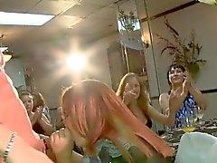 Party skanks sucking stripper dicks