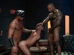 grande do galos homossexual boquetes posições alegres dos homossexual alegre