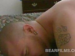 ashby красного dakotah портье медведи голавли