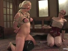 claire adams lorelei lee bdsm orgasme sybian