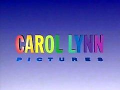 Erbe der Lust - Carol Lynn 1991 Harry S. Morgan