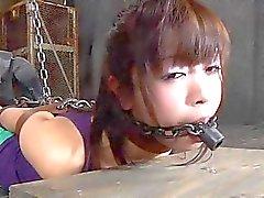 bdsm comunidade de bdsm extrema filmes filmes escravidão de bondage porn videos cruéis cenas de sexo