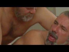 homossexual homens em pêlo ursos papais