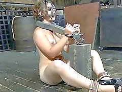 Bounded gal is dripping wet from her sexy torment