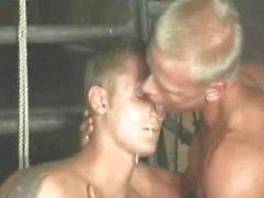 homosexuell solo homosexuell masturbation oralsex kaukasisch