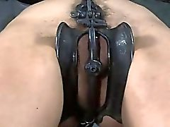 Clamping beautys knockers