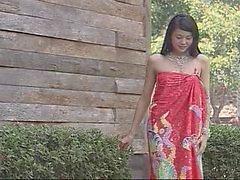 asiatisk mjukporr vintage