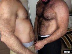 dos ursos alegres boquetes posições alegres gays alegre dos homens alegre