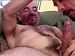 Raw Cock Breeding Gay Bears