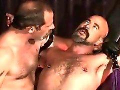 bdsm гей медведей гей daddies к гомосексуалистам
