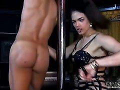 Shemale Striptease