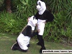 Bridgette B & Alex D Panda Style