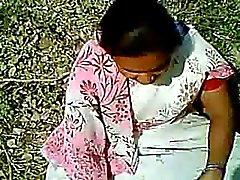 lampeggiante indiano matura