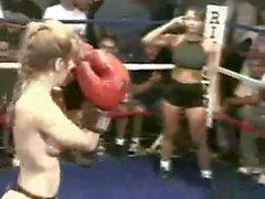 peleas de gatos mujeres musculosas deportes tetas