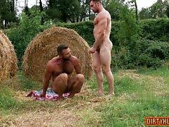 homosexuell blowjob homosexuell homosexuell homosexuell herren muskel homosexuell außenhomosexuell