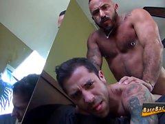 bareback gay os ursos de gay boquete gay dos homossexual alegre hd os gays lésbicas