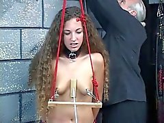Small-titted collared bdsm brunette gets her nipples clamped and pulled hard