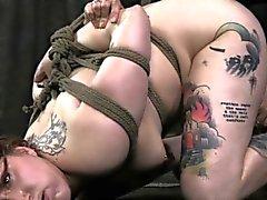 BDSM bondage sub Mollie Rose hogtied
