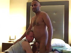 middleeastern cock breeds guy